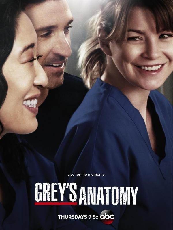 Greys Anatomy Staffel 10 Bs