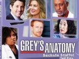 Staffel 6 (Grey's Anatomy)