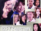 Staffel 10 (Grey's Anatomy)