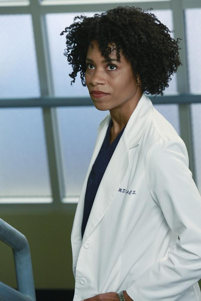 Maggie Pierce | Grey\'s Anatomy Wiki | FANDOM powered by Wikia