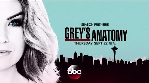 Grey's Anatomy Season 13 Promo
