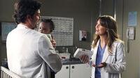 Meredith,derek zola