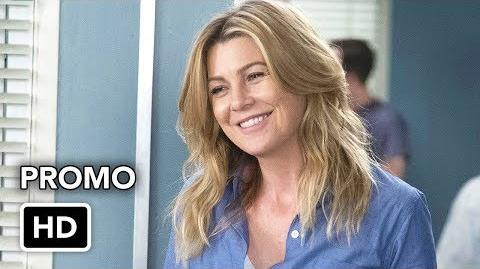 Grey's Anatomy 14x17 Promo