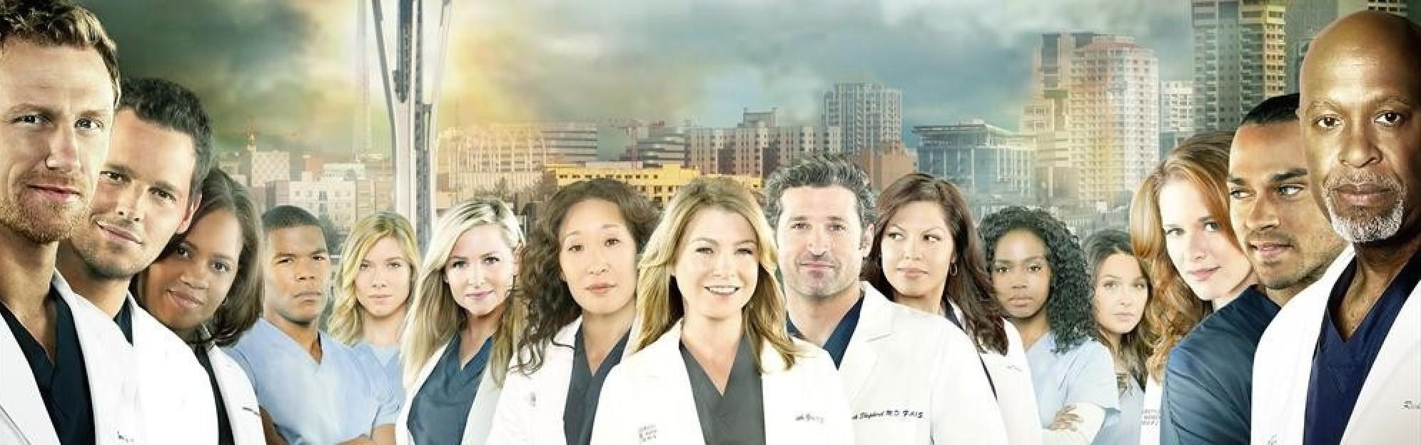 Bild - Greys Anatomy Season 10 Banner.jpg | Grey\'s Anatomy Wiki ...