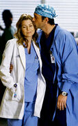 Meredith-Derek