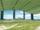 Samburu Field
