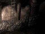 The Warden's Cellar