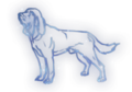 Hound Constellation Icon