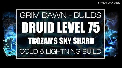 Grim Dawn Druid (Arcanist + Shaman) Cold - Lightning Sky Shard build (lvl 75)