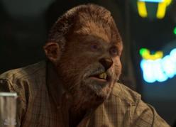 Bud woge - Wiki Grimm