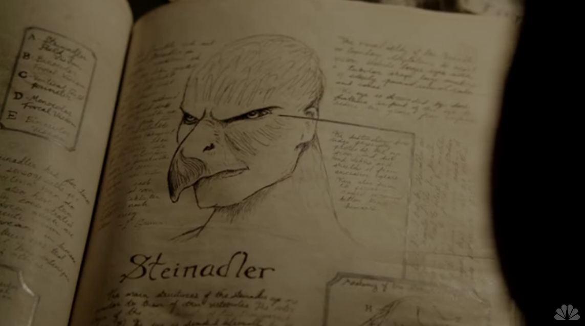 Steinadler-book1