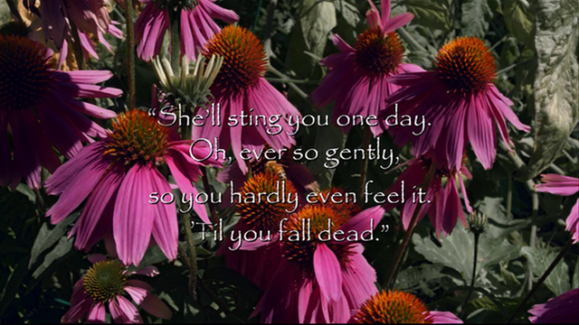 File:Quote 103.png