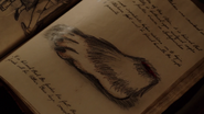 414-Spedigberendess Grimm Diaries2