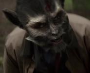 Vulpesmyrca Nigel - Wiki Grimm
