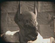 315-Anubis prisoner woged
