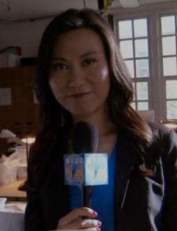 315-Reporter