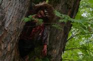 303-Woman in tree