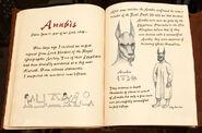 Annubis1