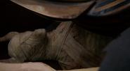 315-Mummy