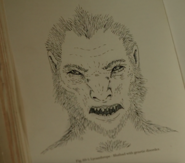 514-Lycanthrope book image