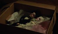 605-Diana's dolls