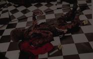 316-Hedig's burned body