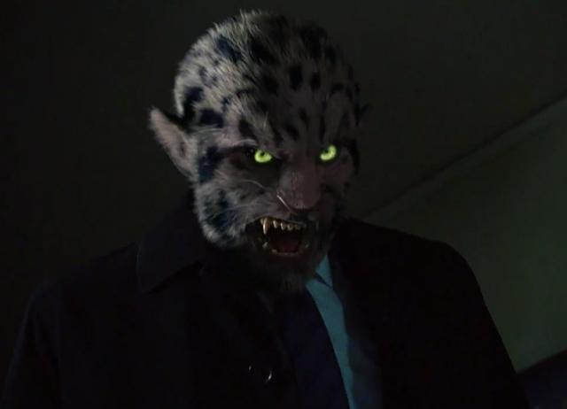 Fájl:306-Leopard Wesen.png