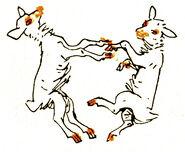 Wolf und die sieben Bernhard Nast 3