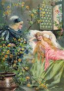 Dornroeschen Postkarte um 1895