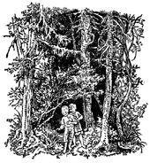 Haensel und Gretel Ernst Schrom 1