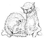 Katze und Maus Mervyn Peake