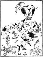 Wolf und die sieben Kurt Reinicke 1947 postkarte