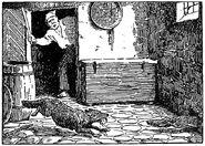 Wolf und fuchs Franz Mueller Muenster