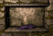 Purple cloth ig