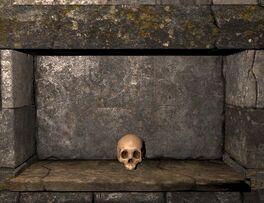 Skull ig