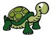 Tortoise on land.jpg