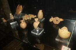 Scarlino centro etruschi