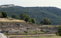 Roselle area archeologica 2
