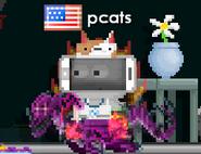 Pcatss