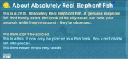 Elephantfish