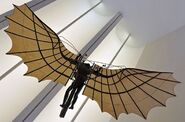 Real Da Vinci Wings