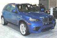 2010 BMW X5M -- 2010 DC