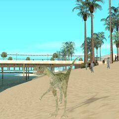 Raptor-like dinosaur on Santa Maria Beach.