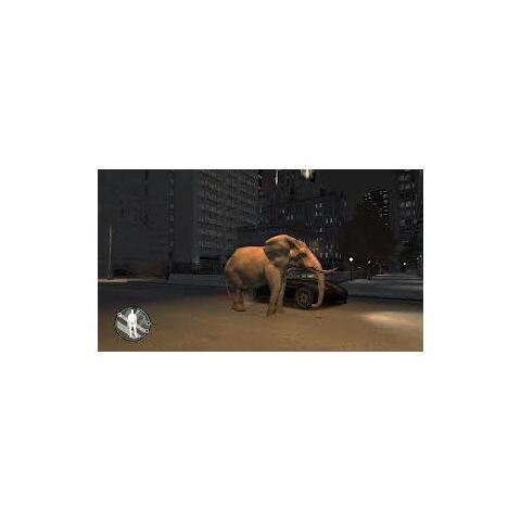 Elephant rampaging