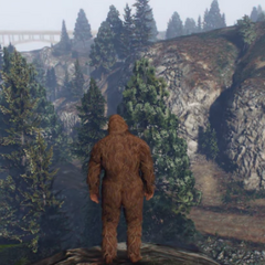 Player in the wild as the Bigfoot.