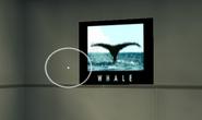 Whale Tail-GTAVC