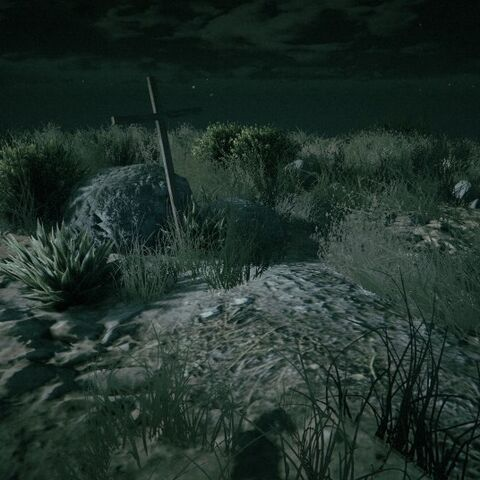 The grave during the night with a night vision filter.