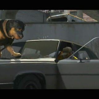 Chop in the Grand Theft Auto V trailer.