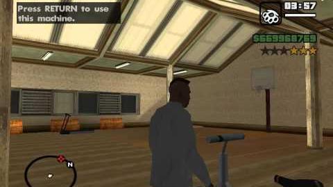 Grand Theft Auto San Andreas- Weird Sounds in Random Crib