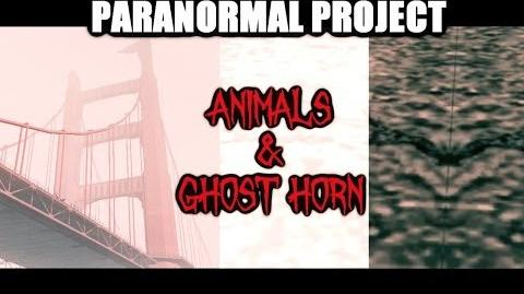 GTA San Andreas Myths . Animals & Ghost horn - PARANORMAL PROJECT 5